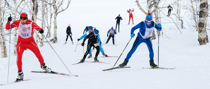 cross-country ski race through trees