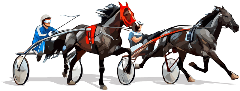 harness racing graphic