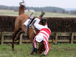 horse and jockey falling