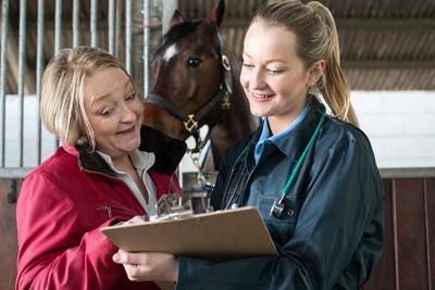 Horse Owner vet