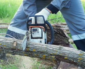 man cutting wood with chainsaw