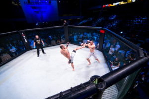 mma fight