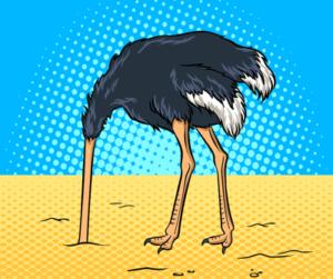 ostrich cartoon head in sand