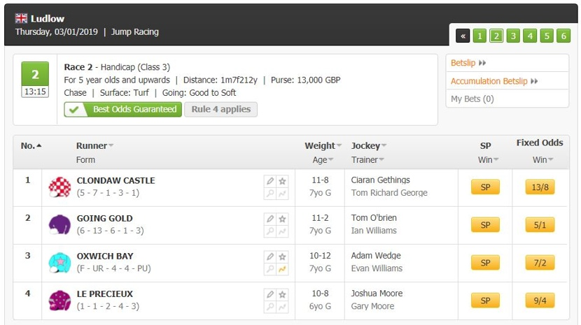 Racebets Markets and Odds