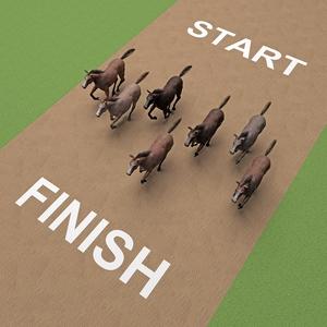 Shortest Horse Race