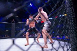ufc cage fight